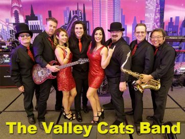 The Valley Cats Party
